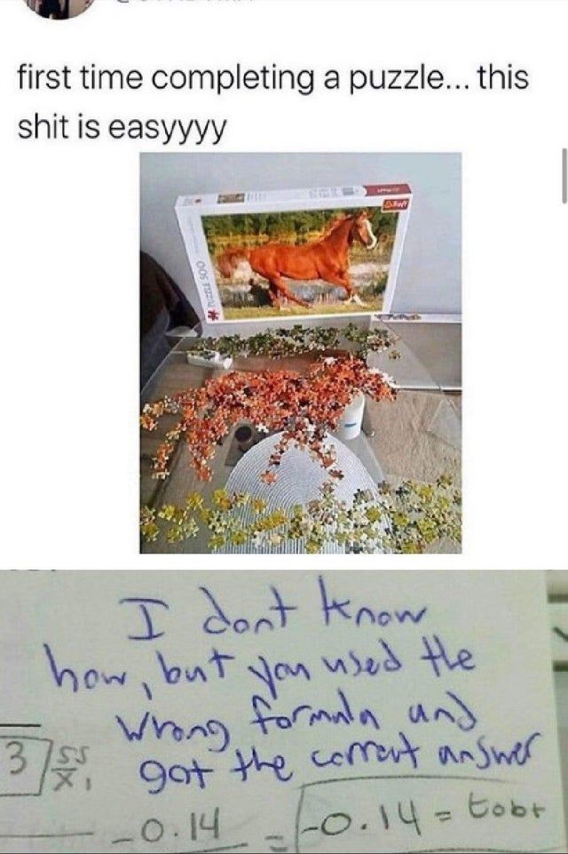 How to solve jigsaw puzzles fast - Funny pictures, memes - funvizeo.com - funny,jigsaw puzzles,memes,horse
