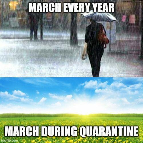 March during quarantine - Funny pictures, memes - funvizeo.com - coronavirus,quarantine,memes,funny