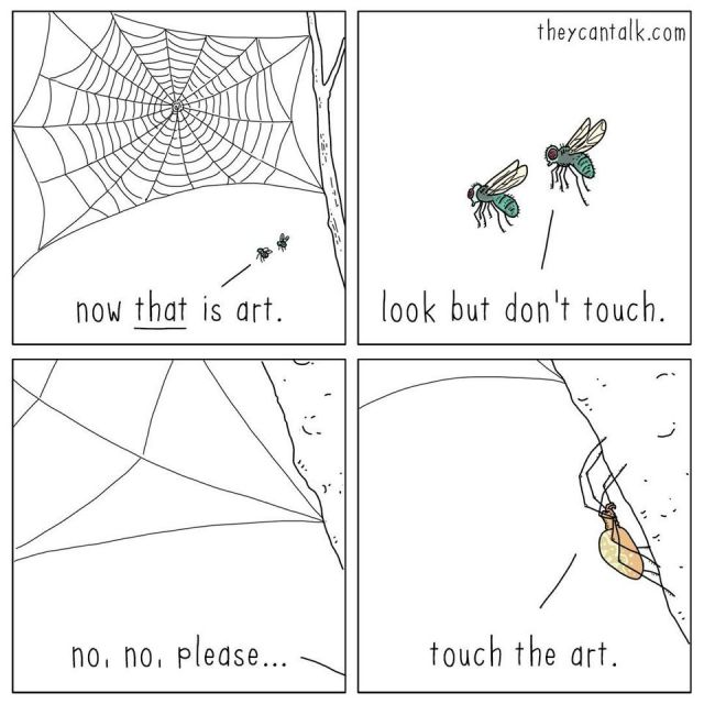 The Art of Spider Silk - Funny pictures, memes - funvizeo.com - comic,funny,spider,fly,art