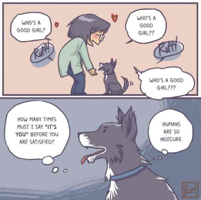 Who's a good girl - Funny pictures, memes - funvizeo.com - comics,funny,funny dog