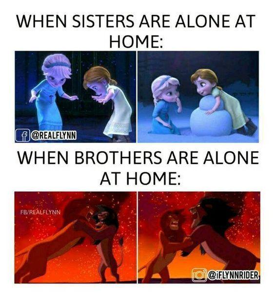 Sibling Relationships Psychology