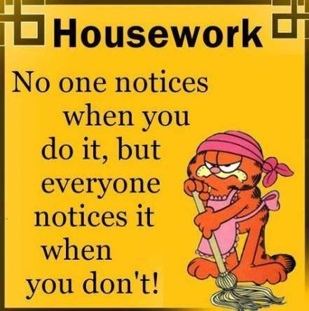 House Cleaning Funny Quotes