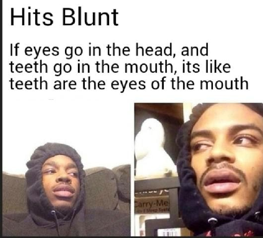 Hits Blunt If eyes go in the head, and teeth go in the mouth, its like teeth are the eyes of the mouth memes