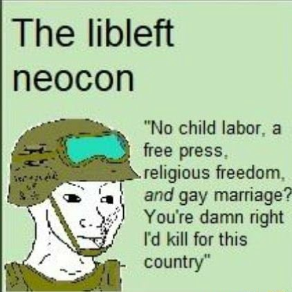 The libleft neocon No child labor, a free religious freedom, and gay marriage You're damn right I'd kill for this country memes