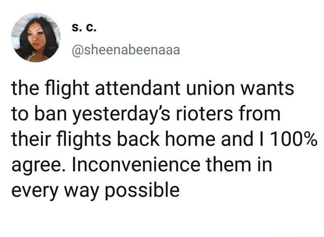 Sheenabeenaaa the flight attendant union wants to ban yesterday's rioters from their flights back home and I 100% agree. Inconvenience them in every way possible memes