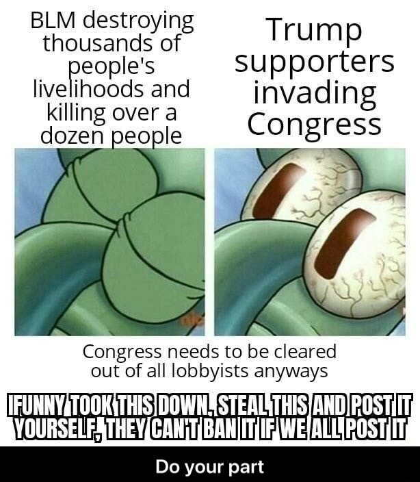 BLM destroying thousands of Trump eople's supporters livelinoods and invading illing over a dozen people Congress Congress needs to be cleared out of all lobbyists anyways STEALSTHISANDIROSTIIT HOUBS Do your part memes
