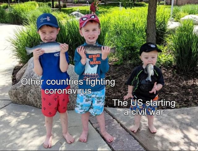 Other countries fighting coronavirus The US starting a civil war memes