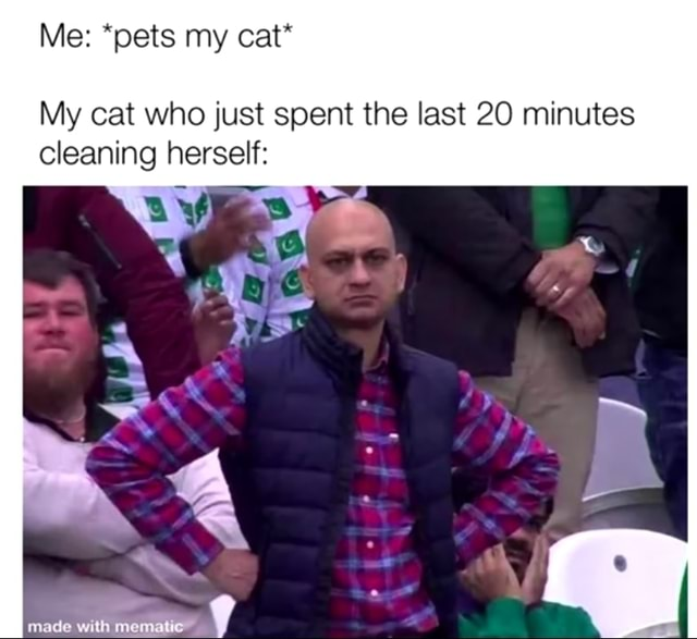 Me *pets my cat* My cat who just spent the last 20 minutes cleaning herself made with memes