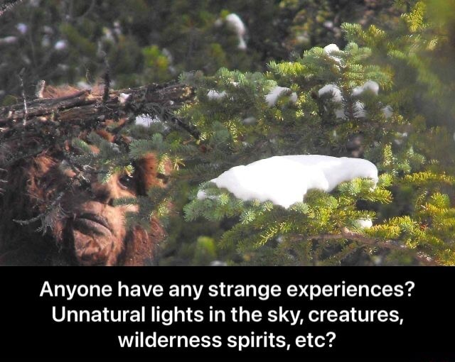 Anyone have any strange experiences Unnatural lights in the sky, creatures, wilderness spirits, etc Anyone have any strange experiences Unnatural lights in the sky, creatures, wilderness spirits, etc memes