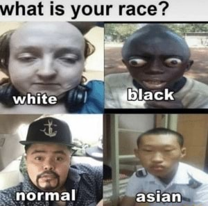 Hat is your race white normal asian meme