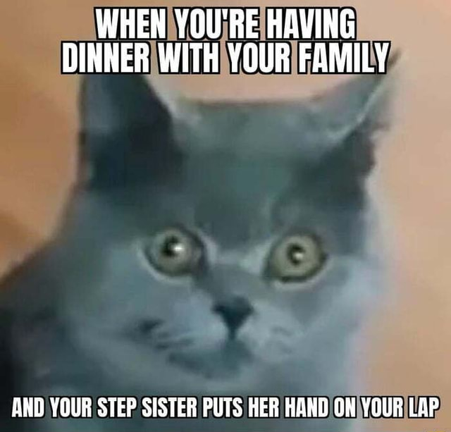 WHEN YOU'RE HAVING DINNER WITH YOUR FAMILY AND YOUR STEP SISTER PUTS HER HAND ON YOUR LAP meme