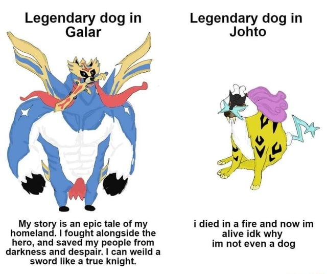 Legendary dog in Legendary dog in Galar Johto My story is an epic tale of my i died in a fire and now im homeland. I fought alongside the alive idk why hero, and saved my people from im not even a dog darkness and despair. I can weild a sword like a true knight memes