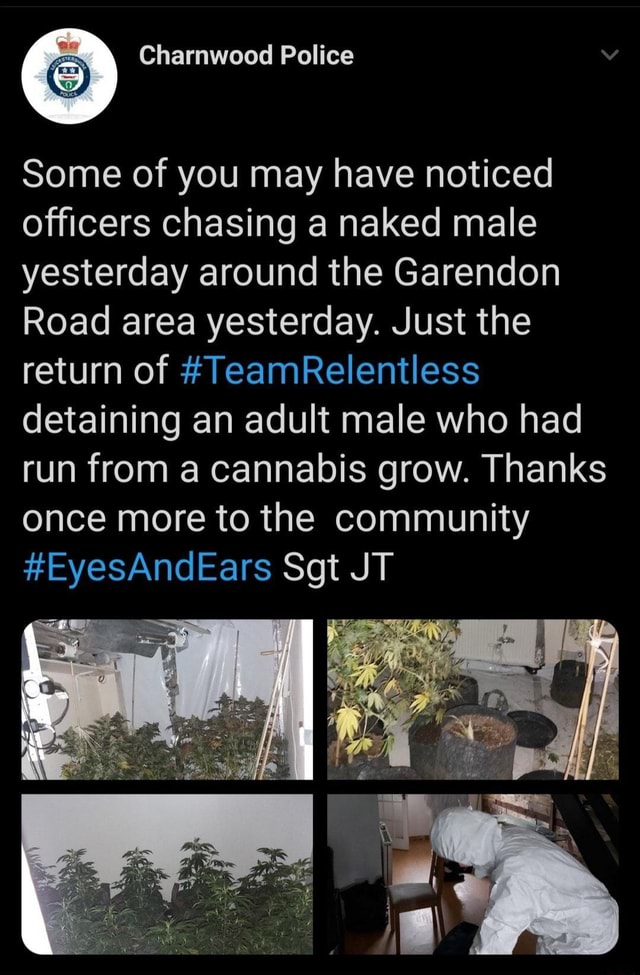 Some of you may have noticed officers chasing a naked male yesterday around the Garendon Road area yesterday. Just the return of TeamRelentless detaining an adult male who had run from a cannabis grow. Thanks once more to the community EyesAndEars Sgt JT memes
