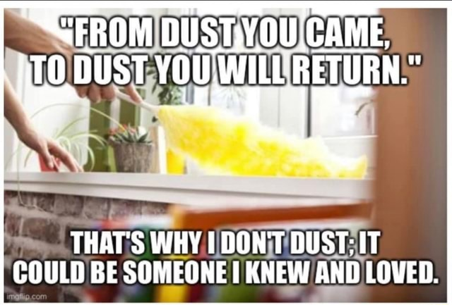 CFROM ,CAME, THAT'S WHY DON'T DUST IT COULD BE SOMEONE KNEW AND LOVED meme