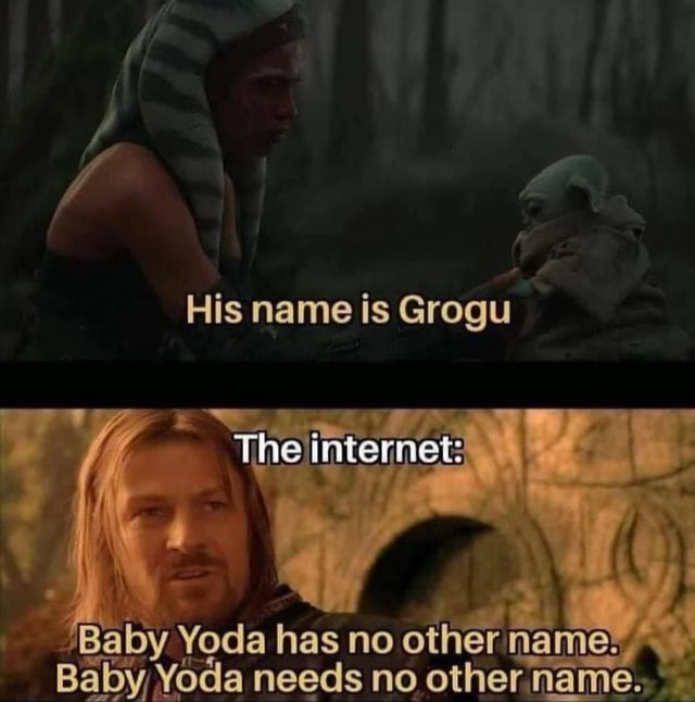 His name is Grogu The intemer Baby Yoda has no other Baby Yoda needs no other name memes