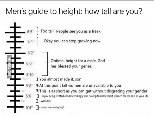 Men's guide to height how tall are you LL, 6'6 Too tall. People see you as a freak. 6'4 } Okay you can stop growing now 6'2 Optimal height for a male. God 6'0 has blessed your genes. 5'10 You almost made it, son 58 At this point tall women are unavailable to you iF This is as short as you can get without disgracing your gender 5'6 Enjoy being treated condescendingly and having to chase short women for the rest of your life WHYPG 5'4 are you even trying memes