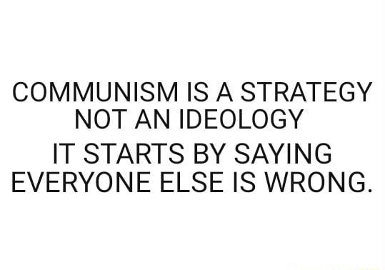 COMMUNISM IS A STRATEGY NOT AN IDEOLOGY IT STARTS BY SAYING EVERYONE ELSE IS WRONG meme