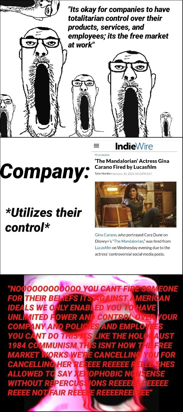 6  Its okay for companies to have totalitarian control over their products, services, and employees its the free market at work IndieWire The Mandalorian Actress Gina Company no Fired *Utilizes their control* Gina Carano, who portrayed Cara Dune on The Mandalorian, was fired from Lucasfilm on Wednesday evening due to the actress controversial social media posts. VOU FOR IDEALS ENABL OWER VOU CART LIKE THE WITHOUT IONS CANCELLING ALLOWED TO NOT meme