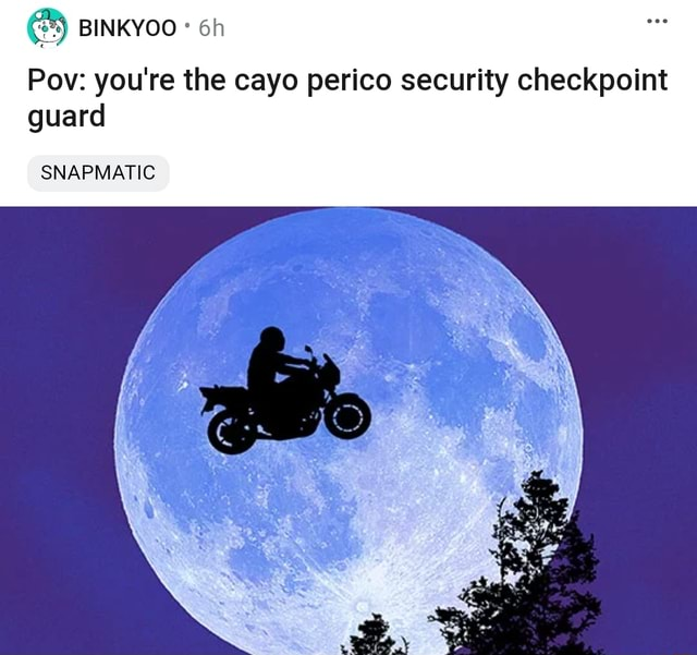 Pow you're the cayo perico security checkpoint guard SNAPMATIC memes