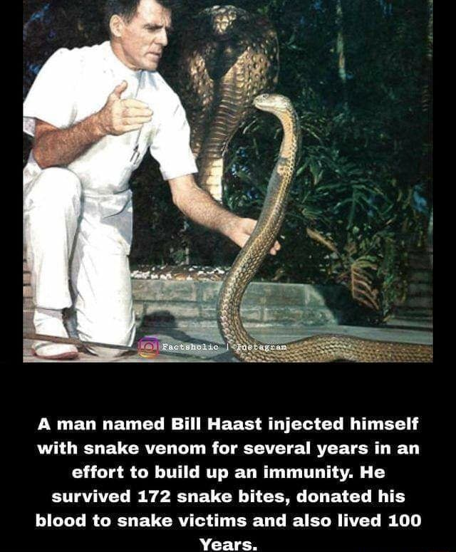 A man named Bill Haast injected himself with snake venom for several years in an effort to build up an immunity. He survived 172 snake bites, donated his blood to snake victims and also lived 100 Years memes