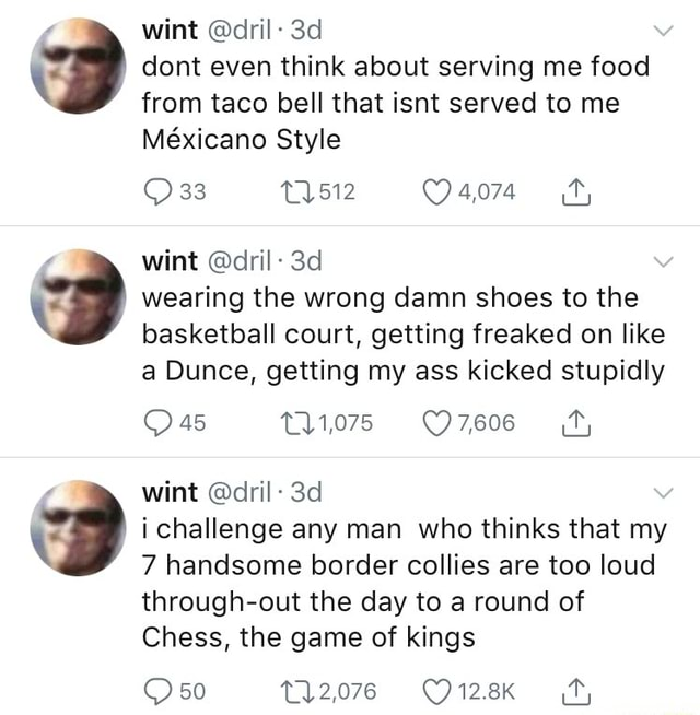 Wint dril dont even think about serving me food from taco bell that isnt served to me Mexicano Style 4,074 fy, wint dril wearing the wrong damn shoes to the basketball court, getting freaked on like a Dunce, getting my ass kicked stupidly 45 ios wint dril i challenge any man who thinks that my 7 handsome border collies are too loud through out the day to a round of Chess, the game of kings 2078 50 memes