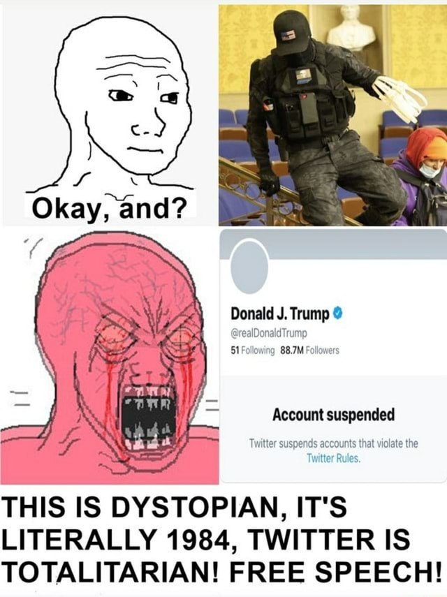 Donald J. Trump realDonaldTrump 51 Following 88.7M Follower Account suspended Twitter suspends accounts that violate the Rules. THIS IS DYSTOPIAN, IT'S LITERALLY 1984, TWITTER IS TOTALITARIAN FREE SPEECH memes