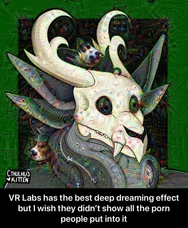 CTHULHS KITTEN VR Labs has the best deep dreaming effect but wish they didn't show all the porn people put into it  VR Labs has the best deep dreaming effect but I wish they didn't show all the porn people put into it meme