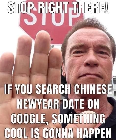 STOP RIGHT THERE IF YOU SEARCH CHINESE NEWYEAR DATE ON GOOGLE, SOMETHING COOL IS GONNA HAPPEN memes