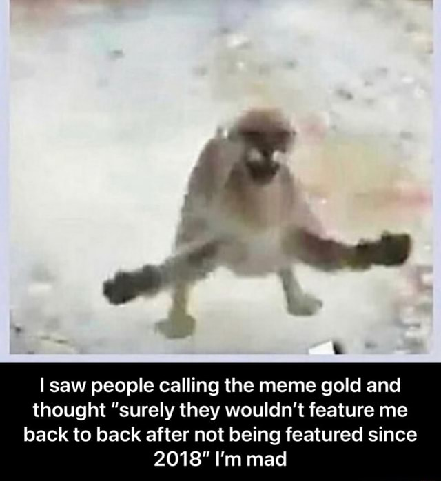 I saw people calling the meme gold and thought surely they wouldn't feature me back to back after not being featured since 2018 I'm mad  I saw people calling the meme gold and thought surely they wouldn't feature me back to back after not being featured since 2018 I'm mad