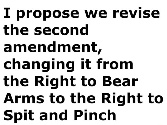 I propose we revise the second amendment, changing it from the Right to Bear Arms to the Right to Spit and Pinch meme
