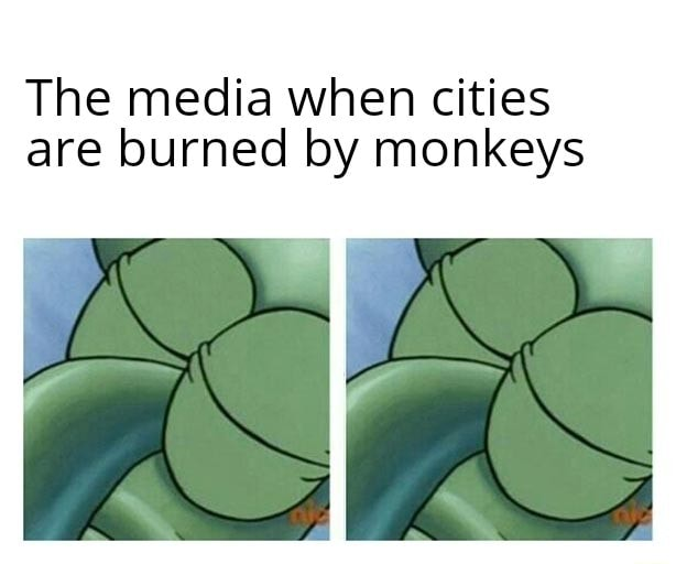 The media when cities are burned by monkeys memes