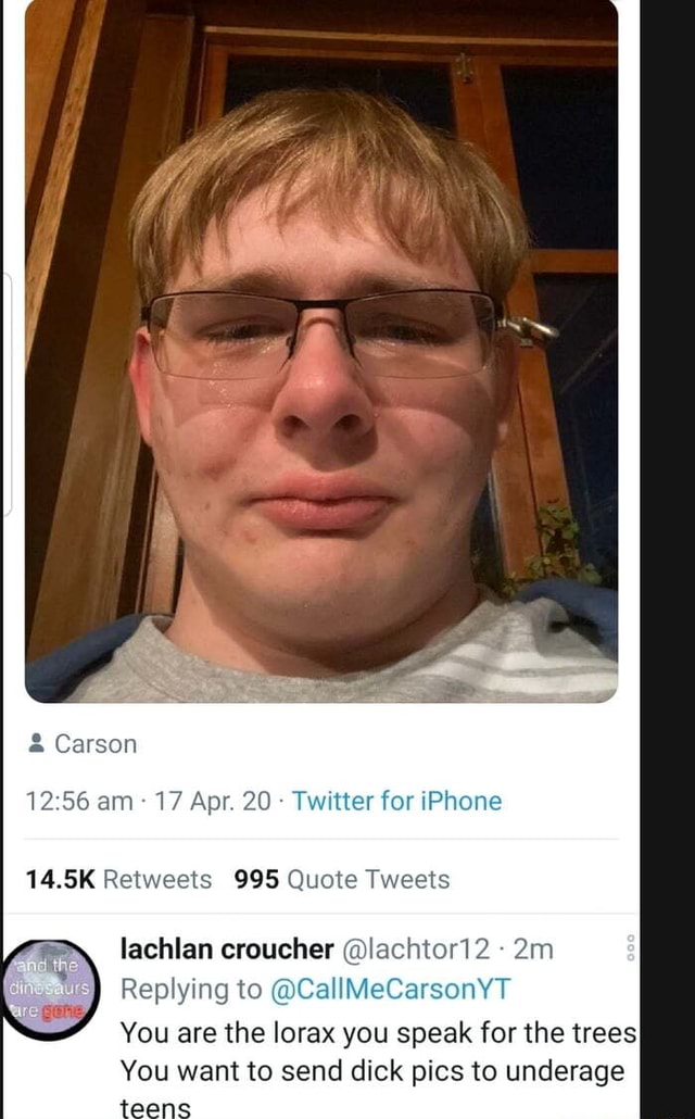 Carson am 17 Apr. 20 Twitter for iPhone 14.5K Retweets 995 Quote Tweets lachlan croucher lachtor12 Replying to CallMeCarsonYT You are the lorax you speak for the trees You want to send dick pics to underage meme