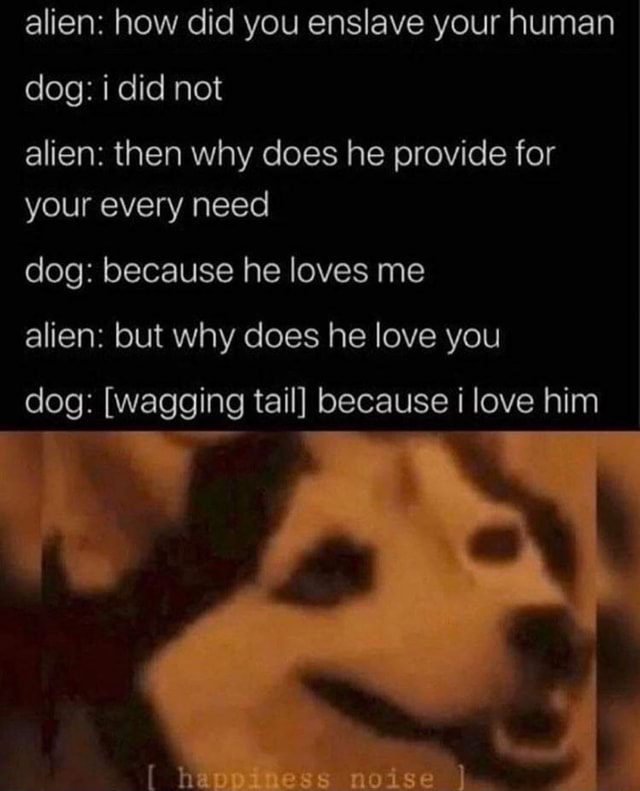 Alien how did you enslave your human dog i did not alien then why does he provide for your every need dog because he loves me alien but why does he love you dog  wagging tail because love him memes