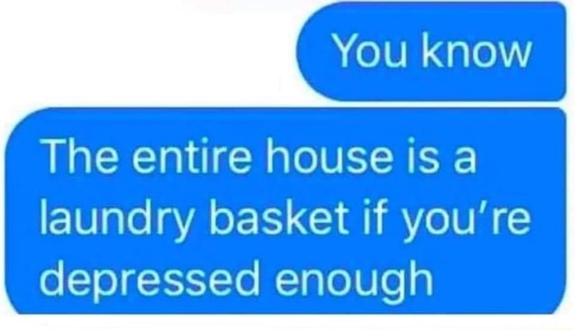 You know The entire house is a laundry basket if you're depressed enough meme