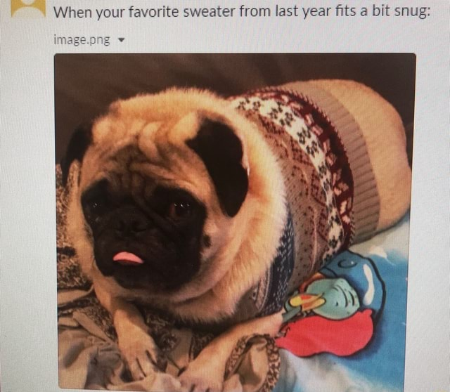 When your favorite sweater from last year fits a bit snug il image.pne memes