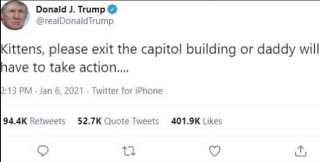 Kittens, please exit the capitol building or daddy will have to take action 13 PM Jan 6, 2021 Twitter for iPhone 52.7K Quote 401.9K Likes memes