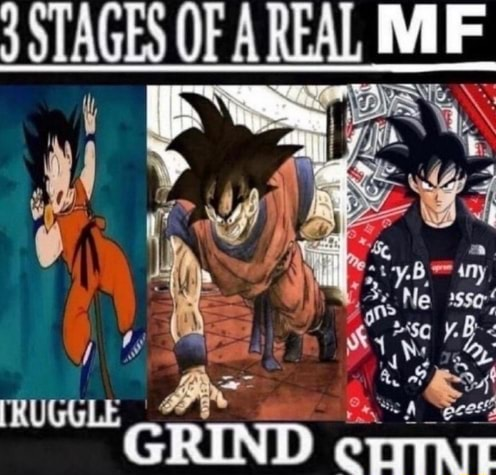 STAGES OFA REAL GRIND memes