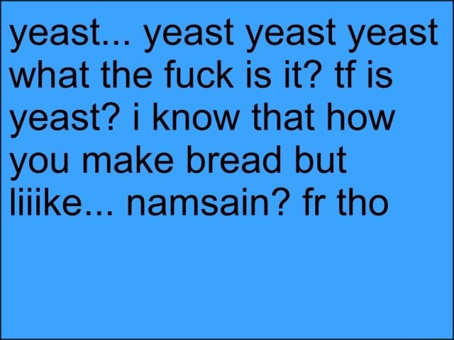 Yeast yeast yeast yeast what the fuck is it tf is yeast i know that how you make bread but liiike namsain fr tho memes
