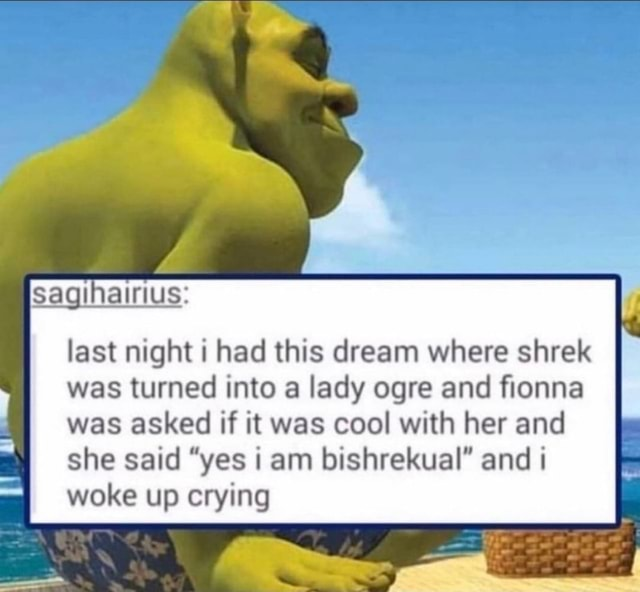 Sagihairius last night i had this dream where shrek was turned into a lady ogre and fionna was asked if it was cool with her and she said yes i am bishrekual and woke up crying memes