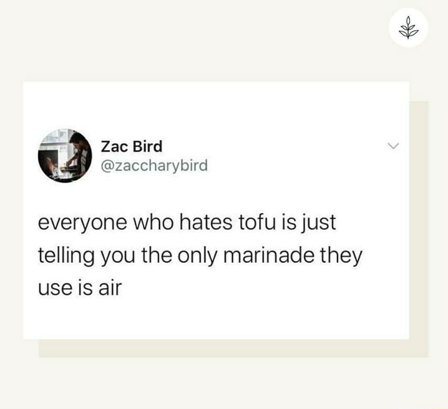 Everyone who hates tofu is just telling you the only marinade they use is air memes