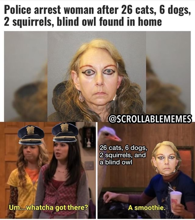 Police arrest woman after 26 cats, 6 dogs, 2 squirrels, blind owl found in home SCROLLABLEMEMES 26 cats, 6 dogs, 2 squirrels, and fa blind owl r A smoothie. got
