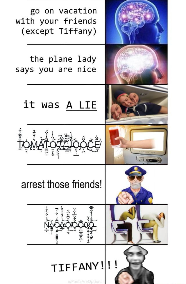 Go on vacation with your friends except Tiffany the plane lady says you are nice it was A LIE arrest those friends TIFFANY meme