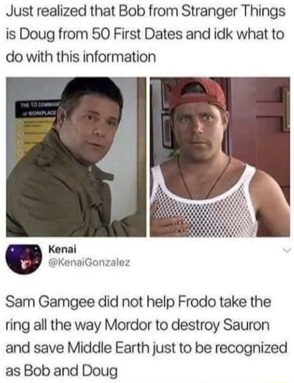 Just realized that Bob from Stranger Things is Doug from 50 First Dates and idk what to do with this information Sam Gamgee did not help Frodo take the ting all the way Mordor to destroy Sauron and save Middle Earth just to be recognized as Bob and Doug meme