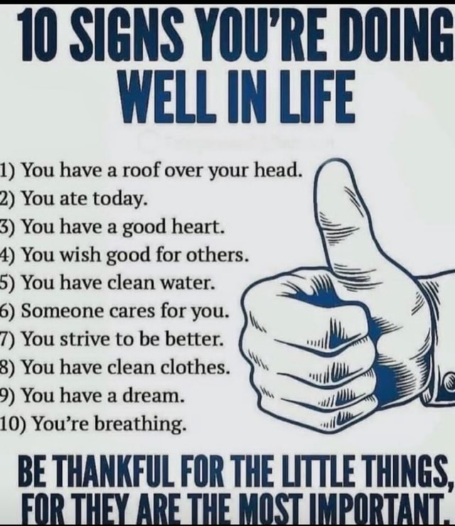 10 SIGNS YOU'RE DOING WELL IN LIFE 1 You have a roof over your head. 2 You ate today. 3 You have a good heart. 4 You wish good for others. 5 You have clean water. 6 Someone cares for you. 7 You strive to be better. 8 You have clean clothes. 9 You have a dream. 10 You're breathing. BE THANKFUL FOR THE LITTLE THINGS, FOR THEY ARE THE MOST IMPORTANT memes