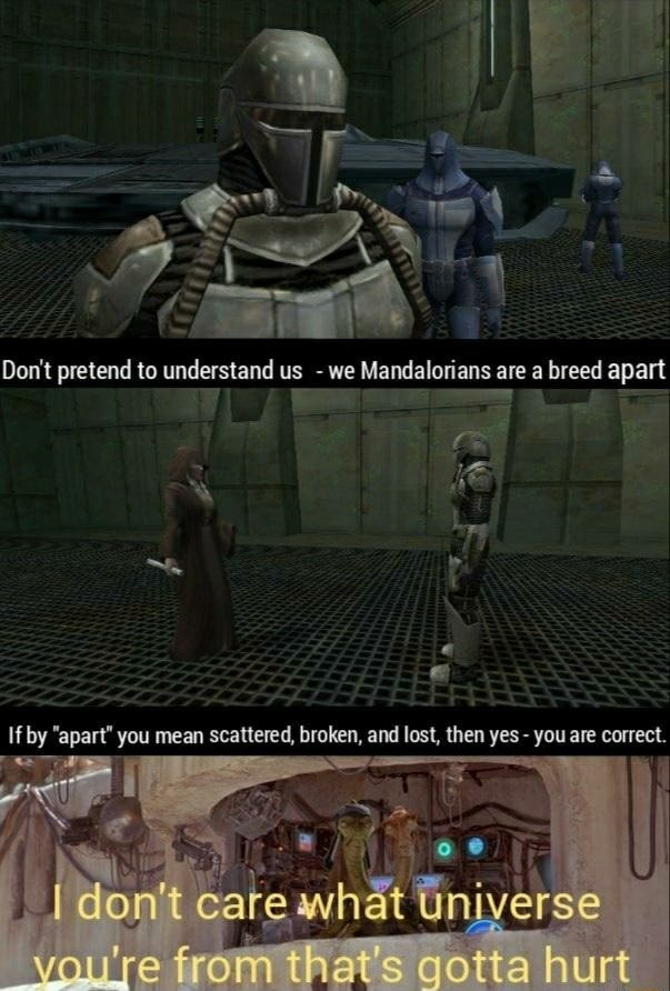 Do not pretend to understand us  we Mandalorians are a breed apart ce ie If by apart you mean scattered, broken, and lost, then yes  you are correct. from that's gotta hurt memes