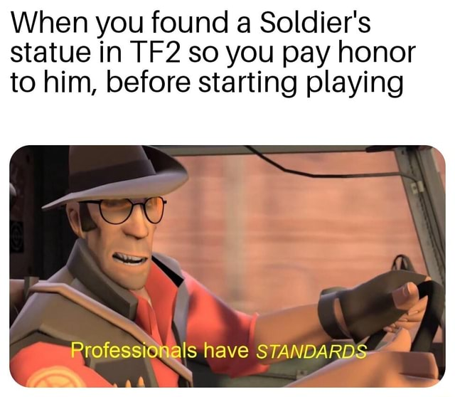 When you found a Soldier's statue in so you pay honor to him, before starting playing Professionals have STANDARDS meme
