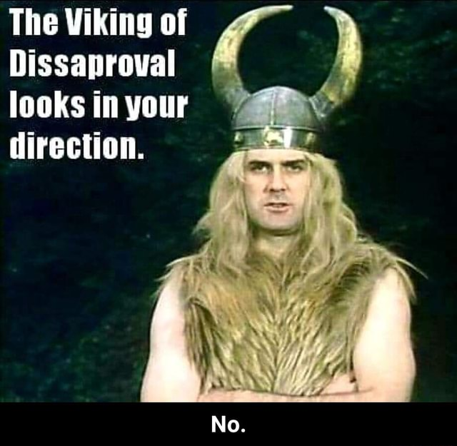 The Viking of Dissaproval looks in your direction. No.  No memes