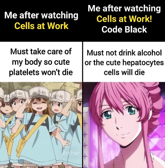 Me after watching Me after watching Cells at Work Cells at Work Code Black Must take care of II Must not drink alcohol my body so cute or the cute hepatocytes platelets won't die cells will die memes