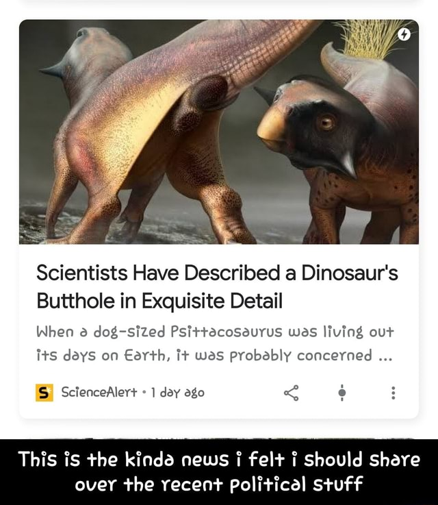 Scientists Have Described a Dinosaur's Butthole in Exquisite Detail When dog sized PsittacoSeurus was living out its days on Earth, it was probably concerned SS ScienceAler day ago This is the kinddd news felt i Should Share over the recent Political stuff  This is the kinda news i felt i should share over the recent political stuff meme