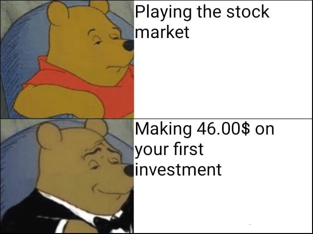 Playing the stock market Making 46,008 on your first investment meme
